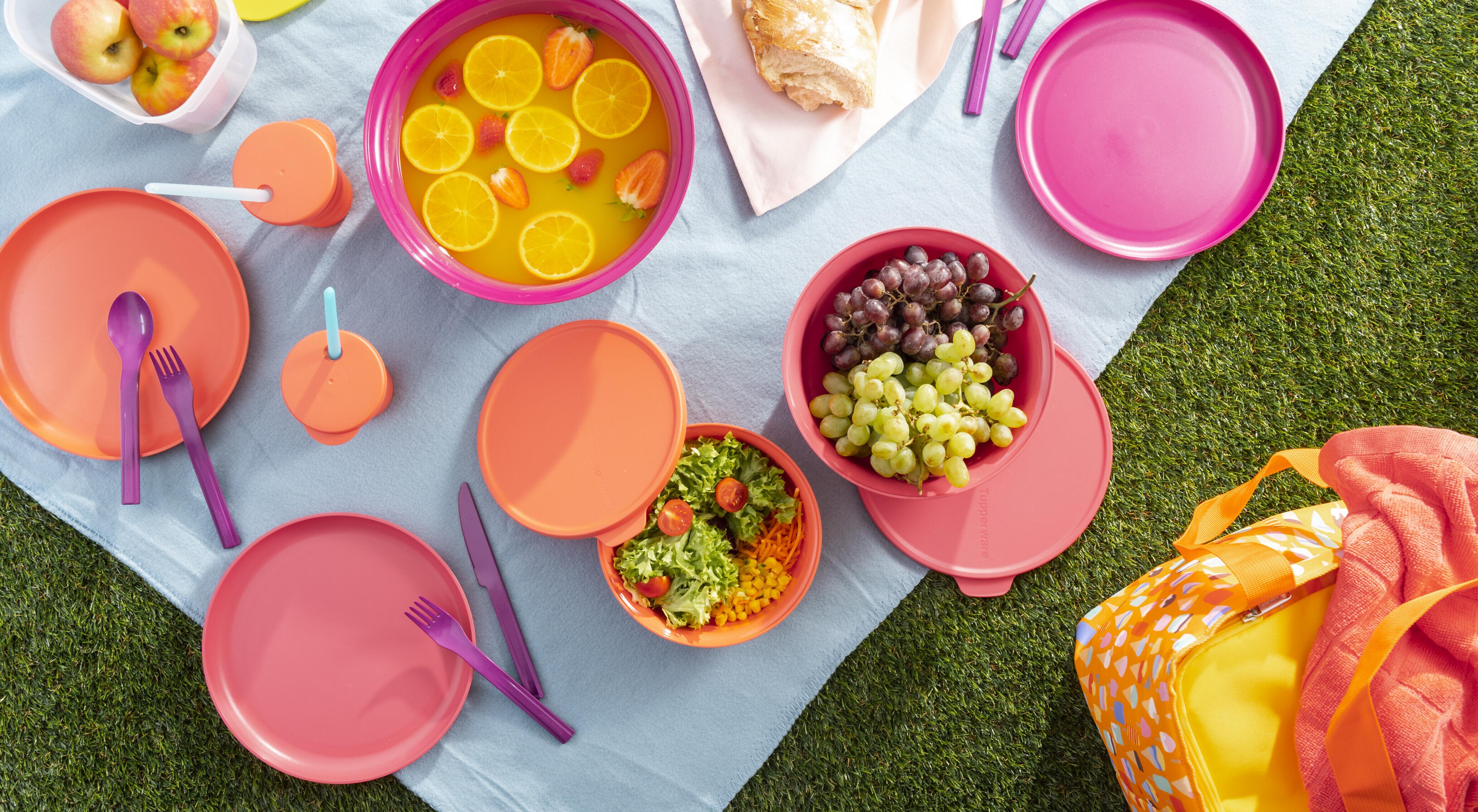 Piknik uz Tupperware proizvode